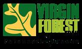 vft_logo_small