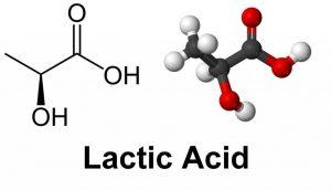 lacticacid-1024x587