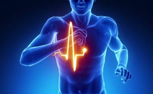 Η καρδιά του αθλητή